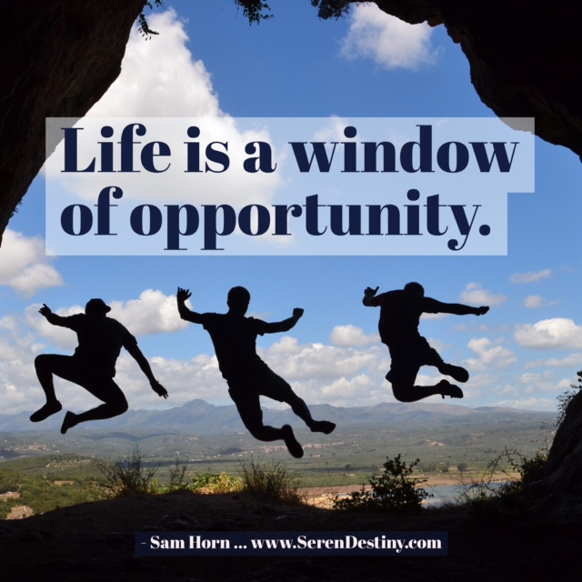 Life is a window of opportunity