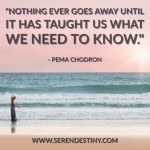 Day Right Quote #4:  Nothing Ever Really Goes Away Until It Has Taught Us What We Need to Know