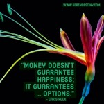 Day Right Quote #30:  Money Doesn't Guarantee Happiness; It Guarantees OPTIONS