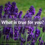 Day Right Quote #26:  What Is True For You?