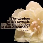Day Right Quote #47:  The Wisdom of Life Consists in the Elimination of Non-Essentials