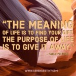 Day Right Quote #57:  The Meaning of Life is to Find Your Gift, the Purpose of Life is to Give It Away