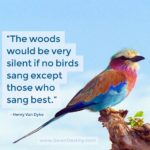 The Woods Would Be Very Silent If No Birds Sang Except Those Who Sang Best
